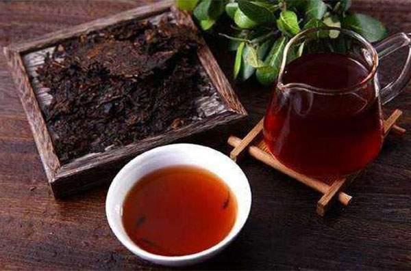 老茶陈新茶涩,何时的普洱最好喝?