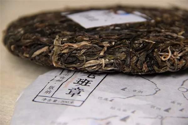 说茶观|普洱茶长毛还能喝吗?