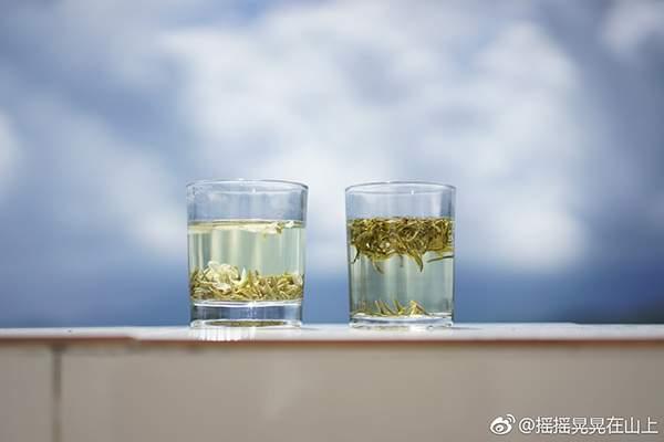 茶人微语录︱普洱茶有致癌风险?普洱茶致癌言论无依据