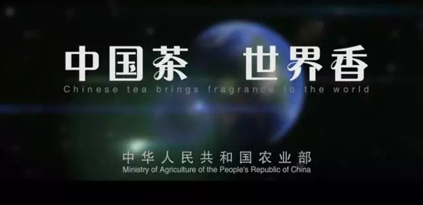 2017普洱茶行业新闻排行榜(5至6月)