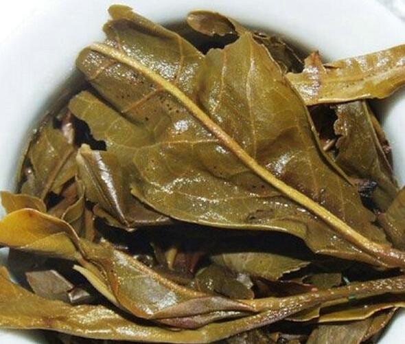 普洱茶叶片厚并不代表就是古树茶