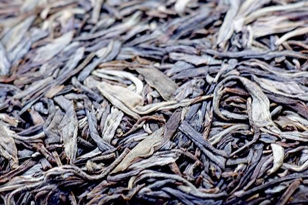 如何才能买到高品质的普洱茶?如何选购普洱茶?