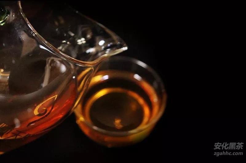 安化黑茶中的茶多酚与几个主要功能性成份