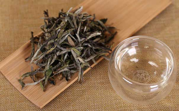 白茶都有哪些品种白牡丹茶选购技巧