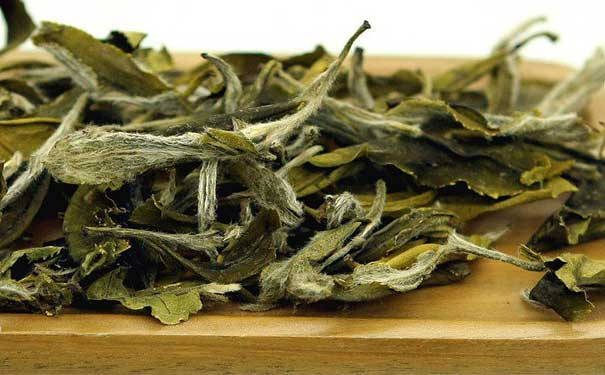 十年白茶家庭貯存白牡丹茶的方法