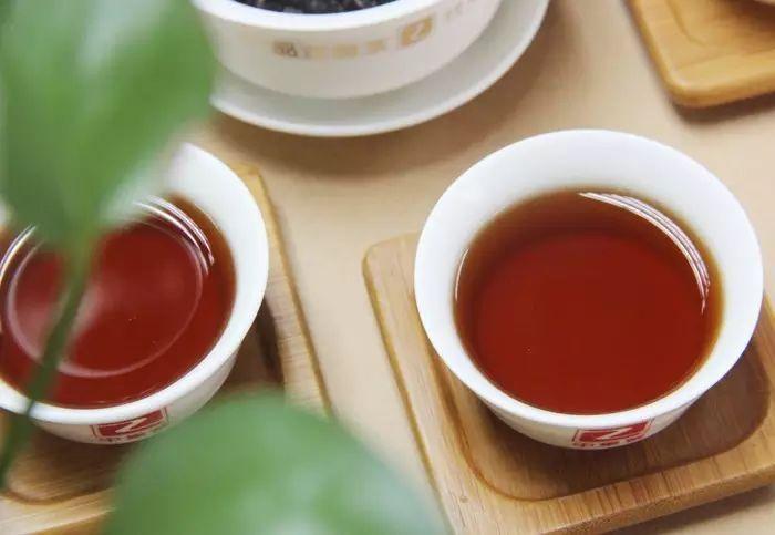 给准备喝普洱新人选购普洱茶的意见