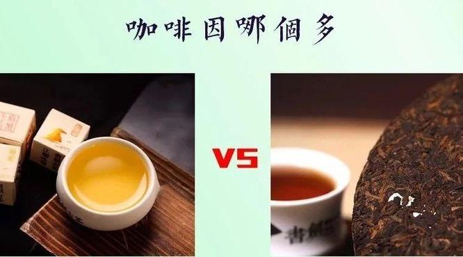 普洱茶生茶和熟茶谁的咖啡碱多?