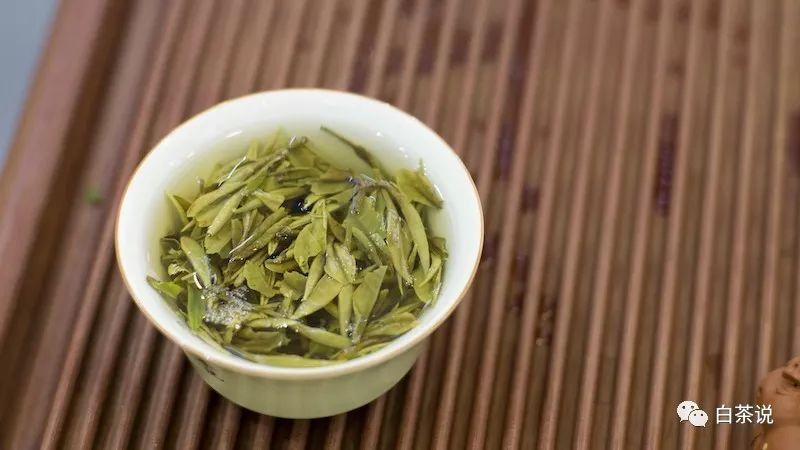 泡白茶的三个温度区间,你知道吗?