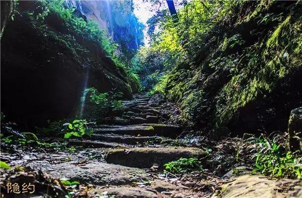 岩茶山场|正岩产区—牛栏坑