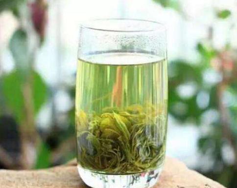 日照绿茶怎么保存?存储要注意的几点和解决方法