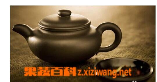 人参乌龙茶的泡法技巧
