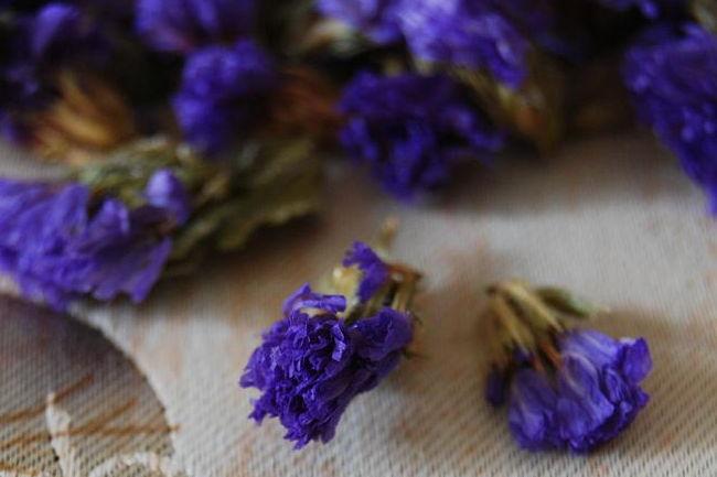 浅谈百合花茶的营养价值功效及其作用