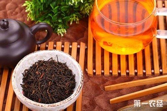 祁门红茶的禁忌注意事项有哪些?