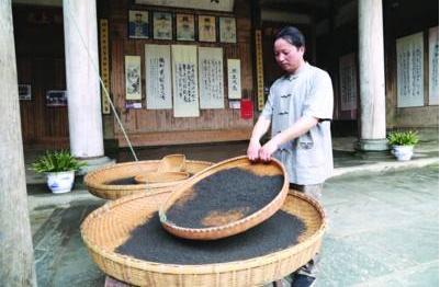祁门红茶怎么制作红茶制作工艺流程揭秘