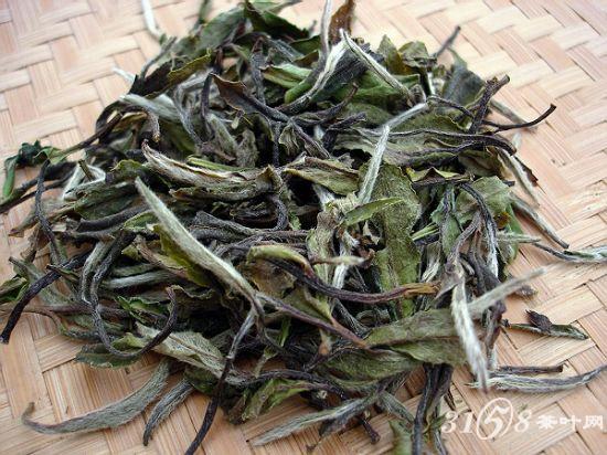 什么是白牡丹茶福建白牡丹茶有什么特点