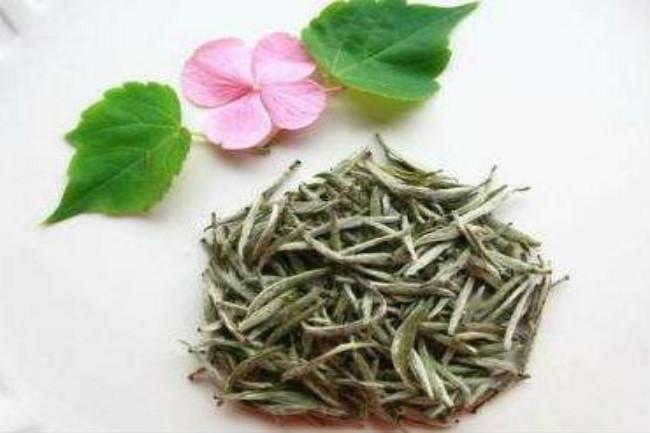 白牡丹茶的特征和基本功效介绍