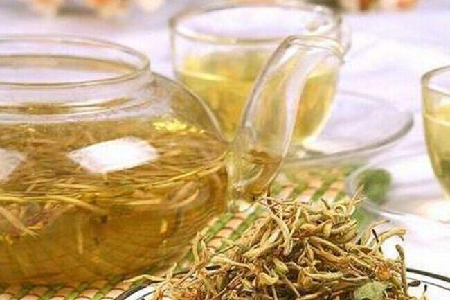 一起来学茶知识之金银花茶的详细介绍