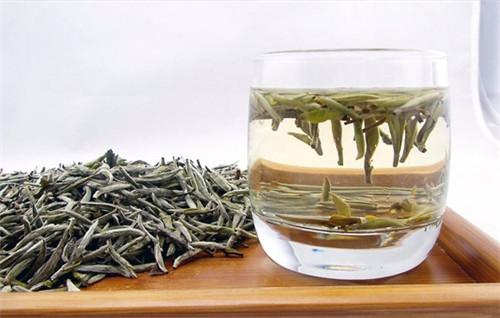 天目湖白茶的泡法
