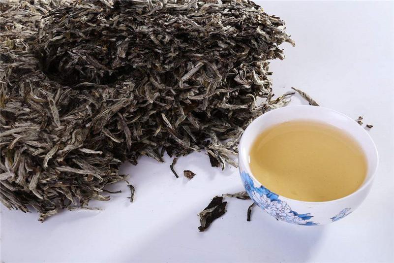 萎凋四要素决定白茶质量