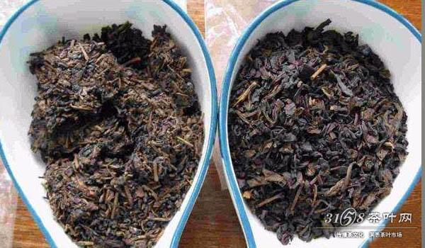 茶艺网教你如何轻松鉴别干湿仓普洱茶