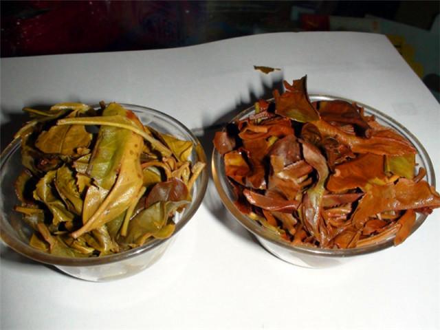 普洱茶中有红梗好还是不好?会不会影响口感?