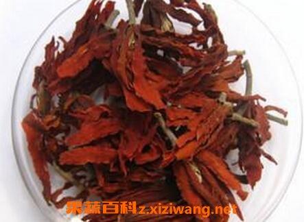 玉蘭花茶的功效與作用玉蘭花茶的副作用