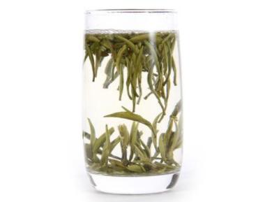 白茶的品种哪种白茶适合存老了喝的