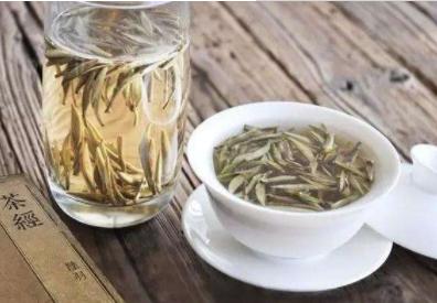 白茶的产地让你真正了解白茶~