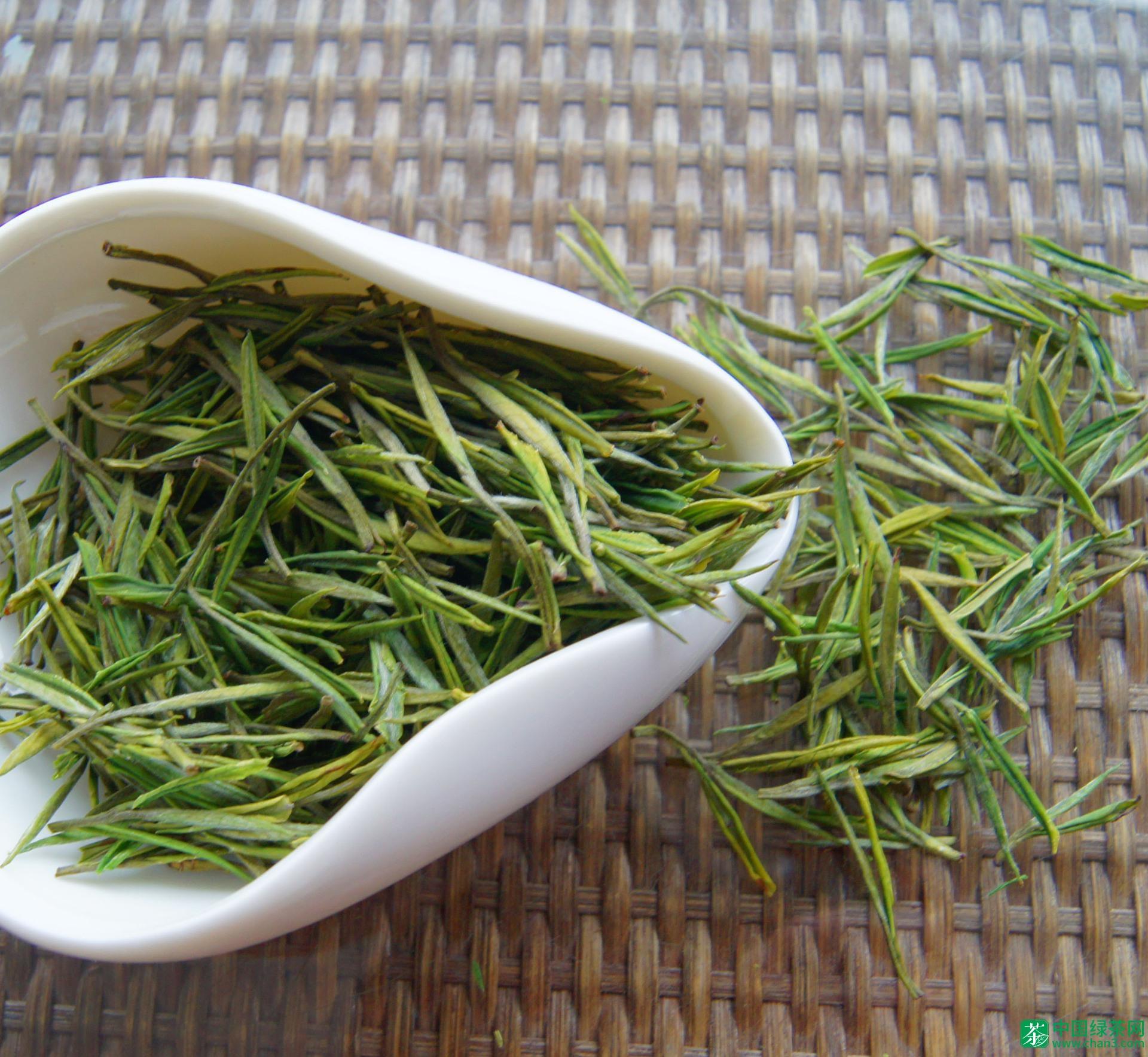 绿茶金山翠芽价格:金山翠芽多少钱一斤