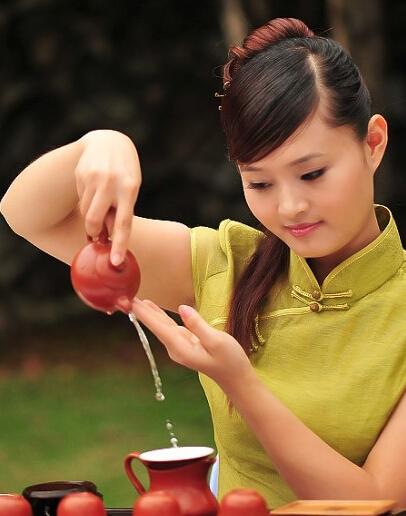 高级茶艺师培训的详细内容