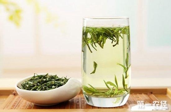 安徽茶叶公司安徽十大茶叶品牌