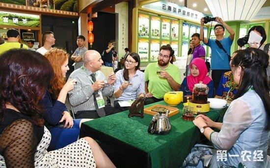 陕西省茶产业品牌建设质量为先加强区域整合