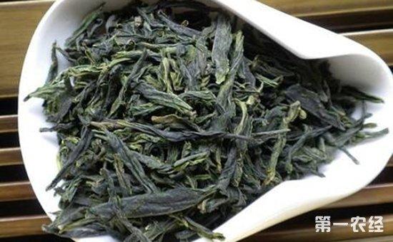 阳羡雪芽茶有什么功效作用?