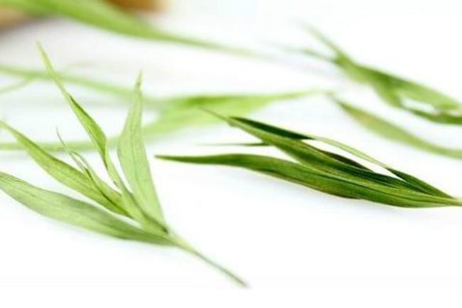 石竹茶是什么茶:石竹茶有什么保健的功效