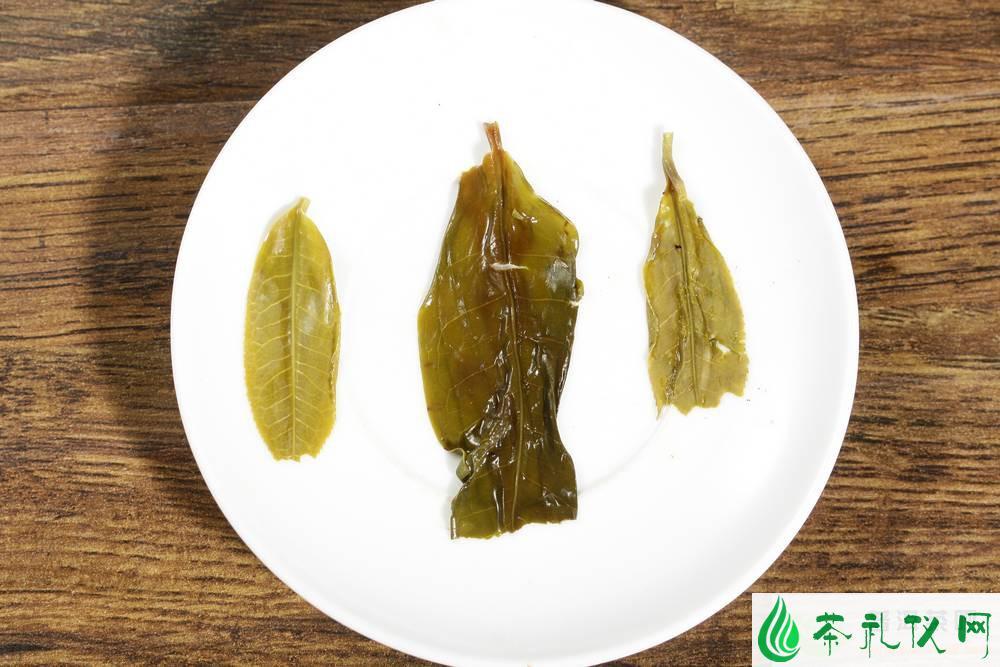 如何识别古树普洱茶茶叶?