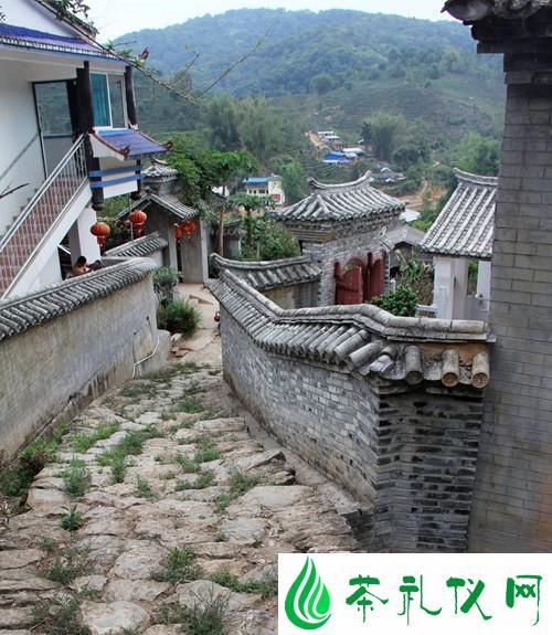 阮殿蓉谈易武茶山·普洱茶历史的转折点