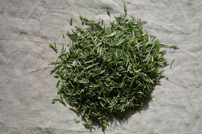 阳羡雪芽是什么茶感悟阳羡雪芽的文化
