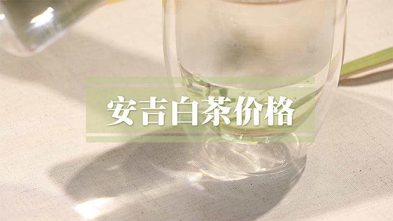 安吉白茶价格
