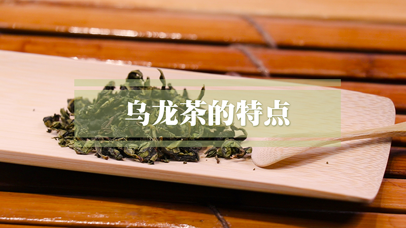乌龙茶的特点