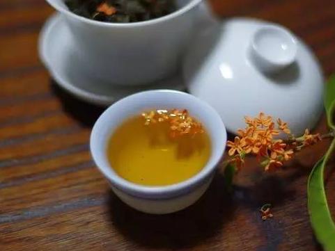 桂花茶的正确做法!