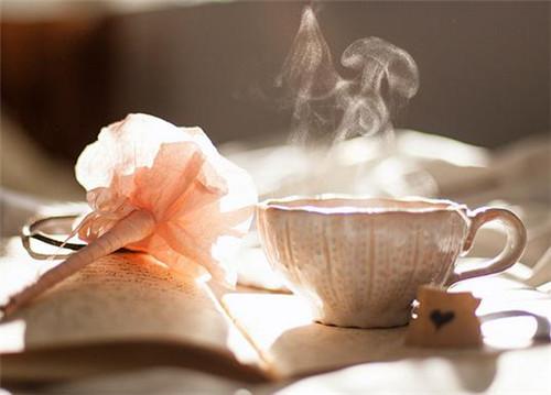 荷叶茶怎么泡最好荷叶茶的副作用