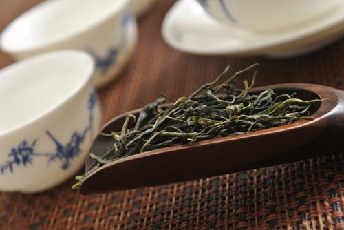 苦丁茶不是茶