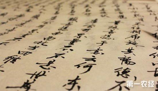 《玲珑茶赋》述说桂东玲珑茶的品质特征