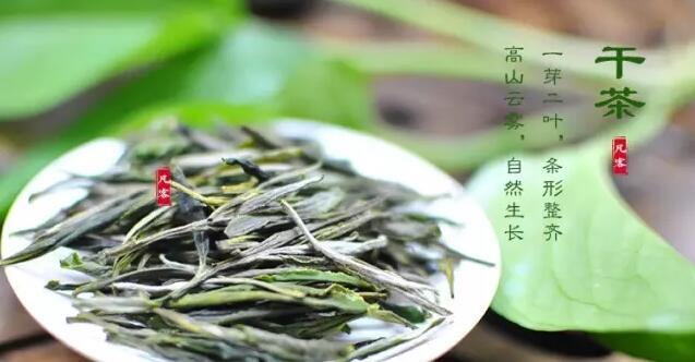 中国名茶之岳西翠兰