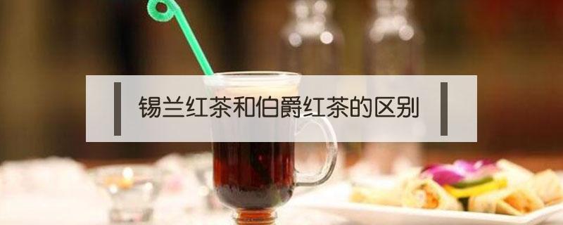 锡兰红茶和伯爵红茶的区别