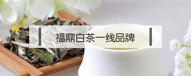 福鼎白茶一线品牌