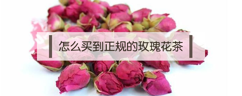 怎么买到正规的玫瑰花茶