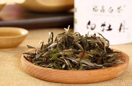 如何鉴别福鼎白茶的质量