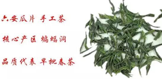购买六安瓜片新茶要注意哪些