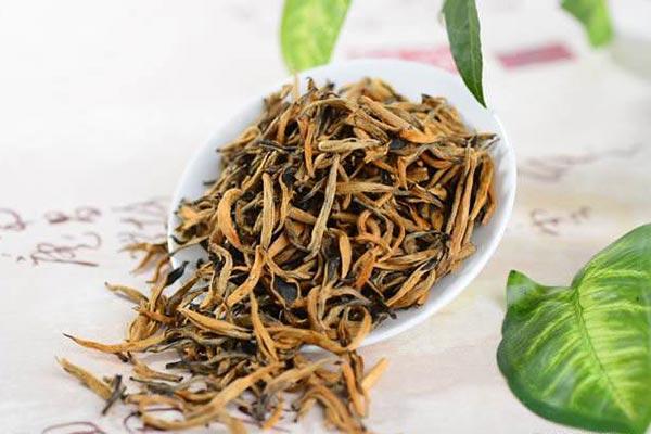 制作滇红茶的鲜茶叶采摘标准